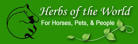 Herbs of the World